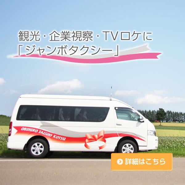 観光・企業視察・TVロケに「ジャンボタクシー」
