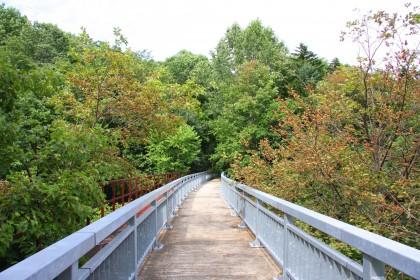糠平川橋梁の上