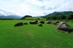 十勝千年の森と紫竹ガーデン巡りプラン【オススメ時期:6月〜9月】