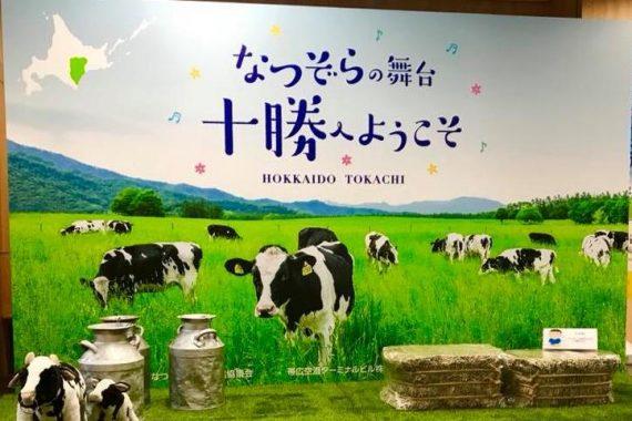 究極の「なつぞら」観光コース【☆期間限定SPプラン☆】